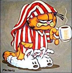 s.Garfield.slaap.2